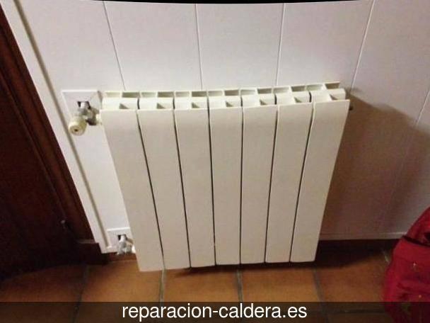 Reparación de Calderas en Alfara del Patriarca ,  Valencia