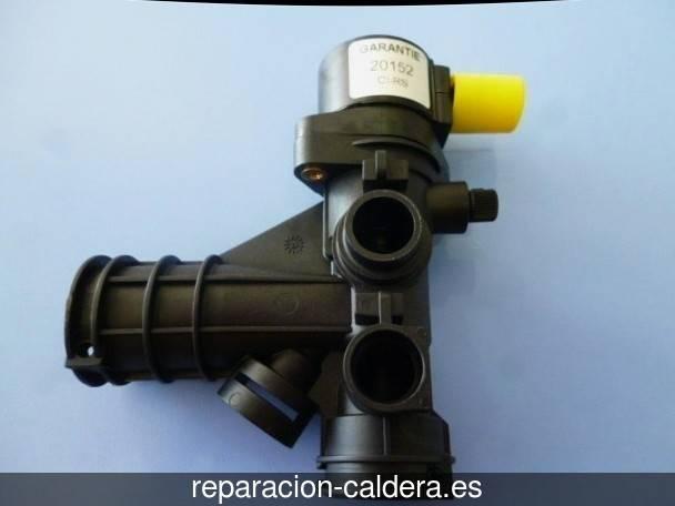 Reparaci n de calderas en montaverner valencia for Reparacion calderas gasoil
